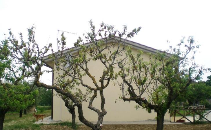 2007---Casa-nella-campagna-umbra-1-Alviano-TR-CIMG3806